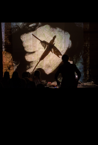 """Spektaklis visai šeimai """"Sekretai iš baltųjų laikų"""" Stalo teatras, Vilnius Menų festivalis vaikams """"Kurhauzo nykštukas"""""""