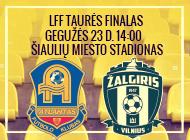 LFF taurės finalas: Vilniaus